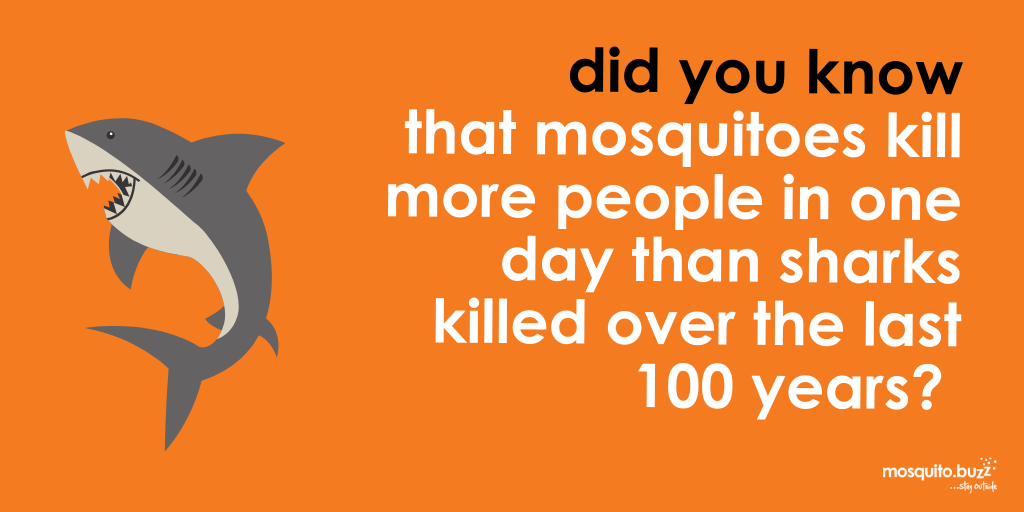 Mosquitoes kill more people in a day than sharks over the last 100.