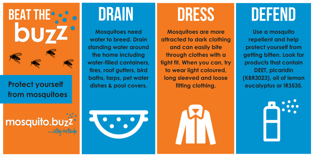 Follow the Three D's of Mosquito Control.