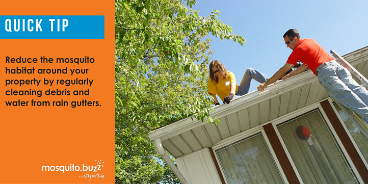 Cleaning gutters helps eradicate potential mosquito breeding