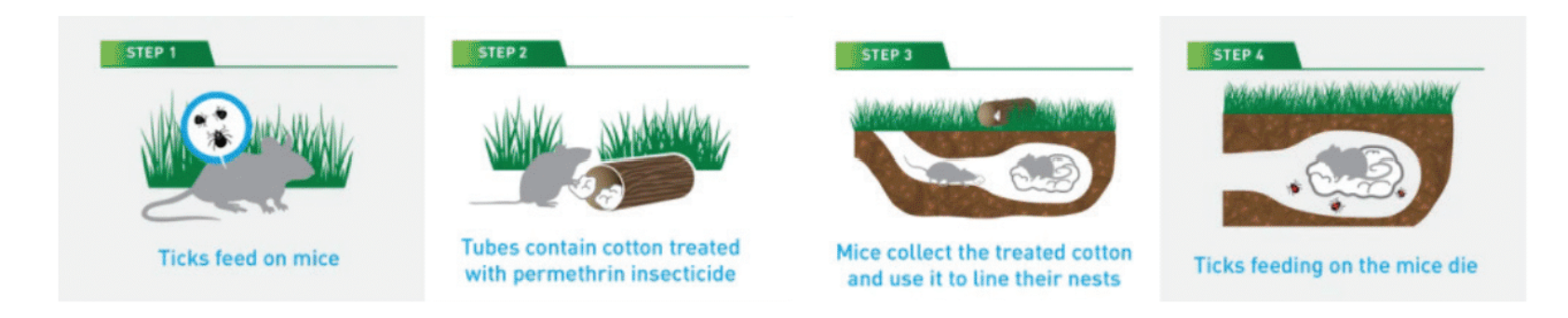 This is how tick tubes work.