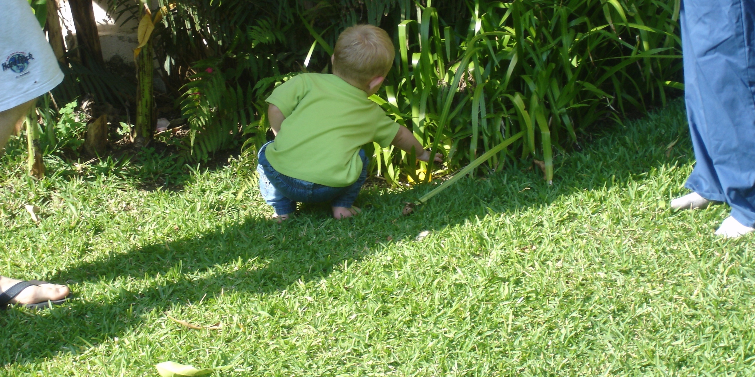 backyard-treasure-hunt.jpg