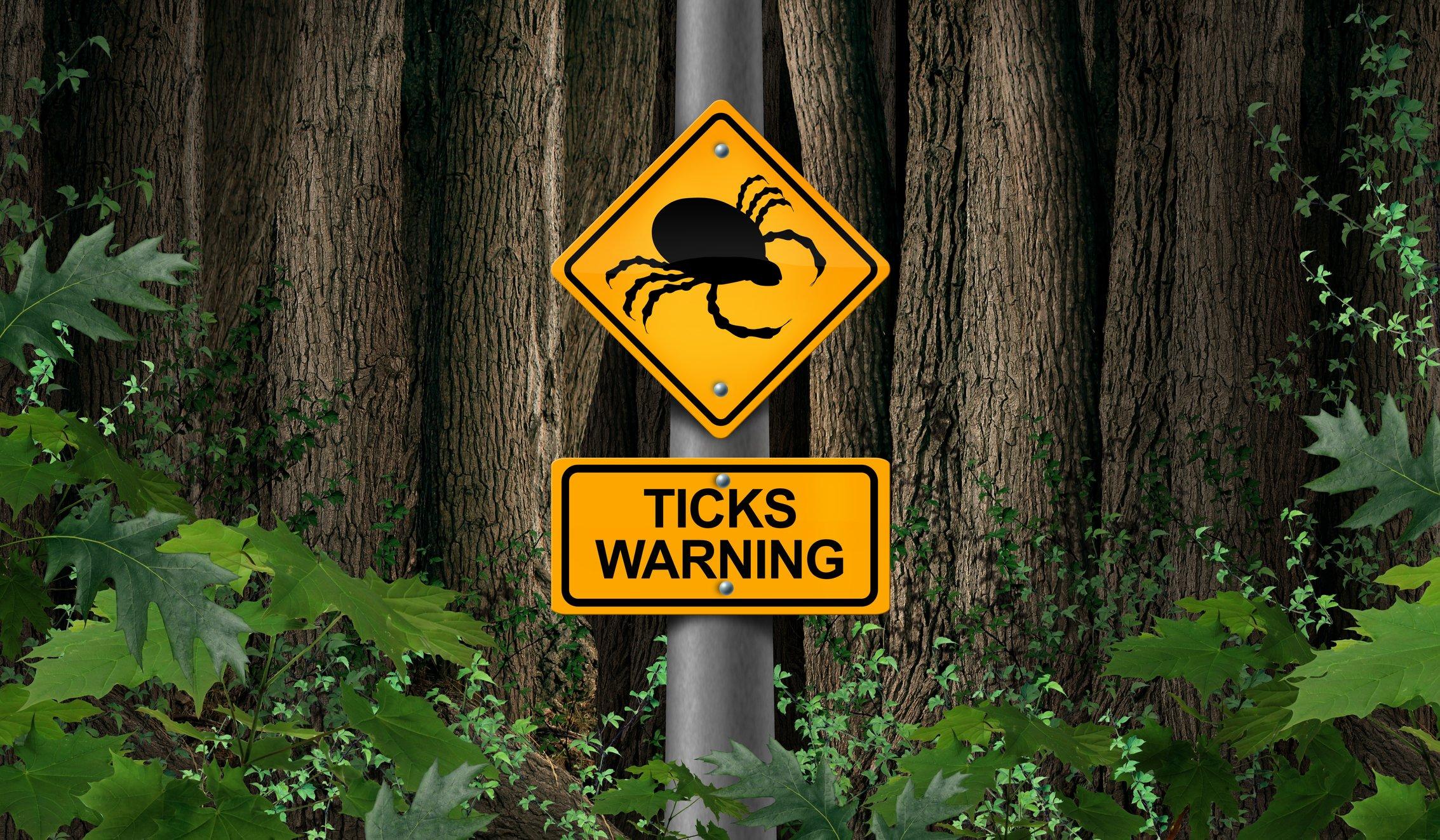Beware of blacklegged ticks.