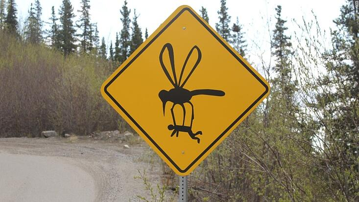 mosquito-sign.jpg