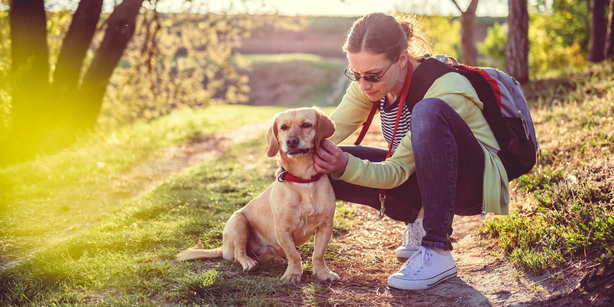 Lyme disease can have serious effects on people and pets and the symptoms can differ from person to person.