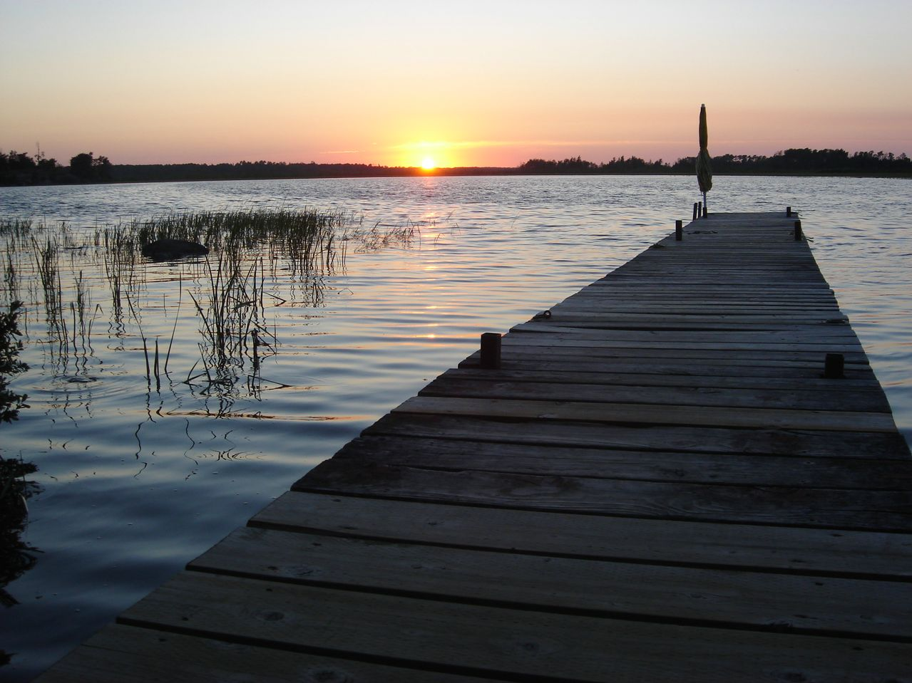 6 Mosquito Tips to Remember When Closing the Cottage - Featured Image