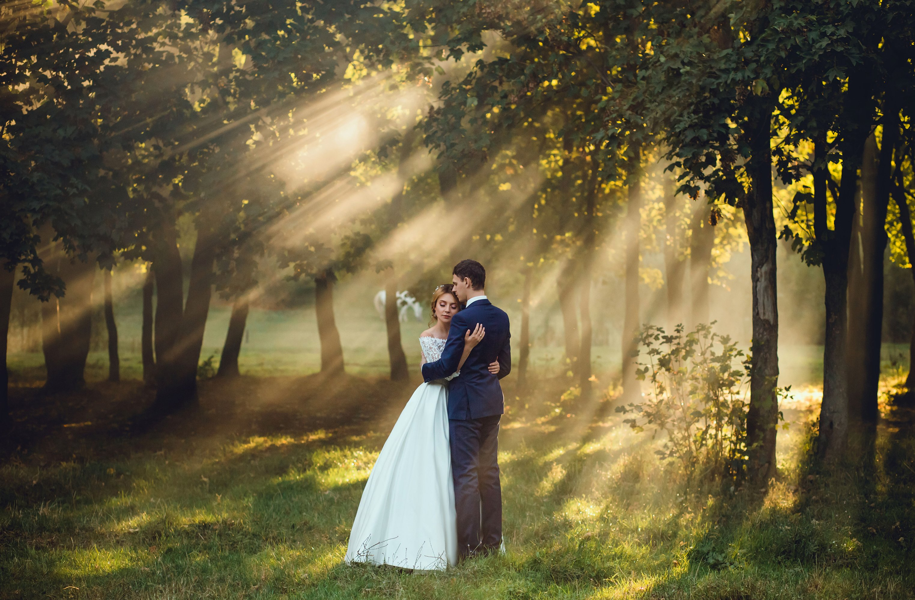 Mosquito Control For Your Outdoor Wedding - Featured Image